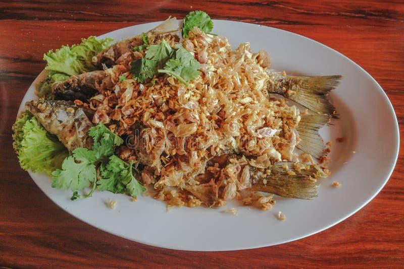 Marisco tailandês em Samut Sakorn imagem de stock