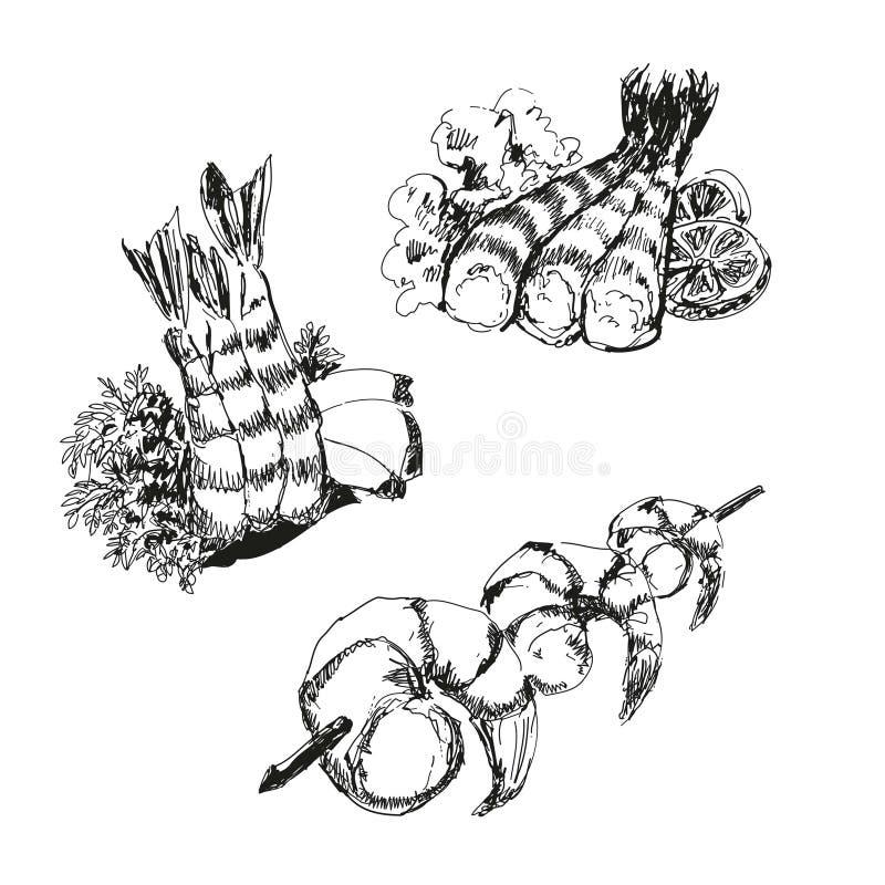 Mariscos. Camarones. ilustración del vector