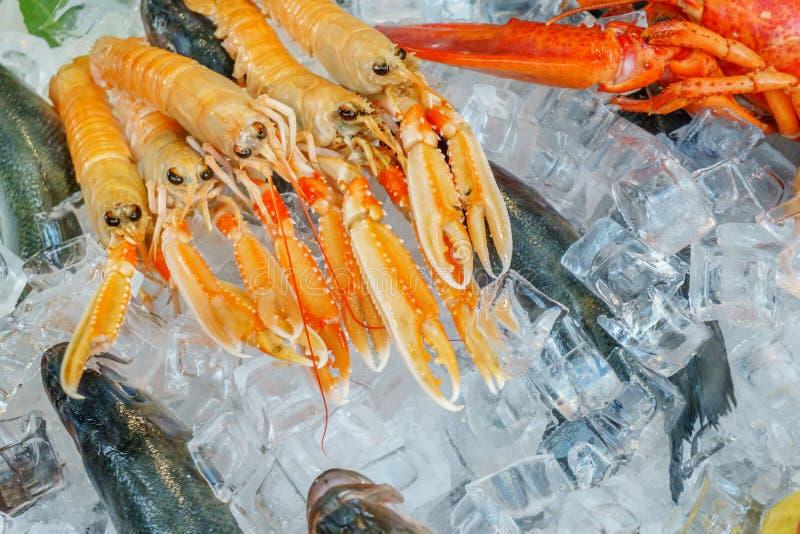 Mariscos en el hielo en el mercado de pescados imagenes de archivo