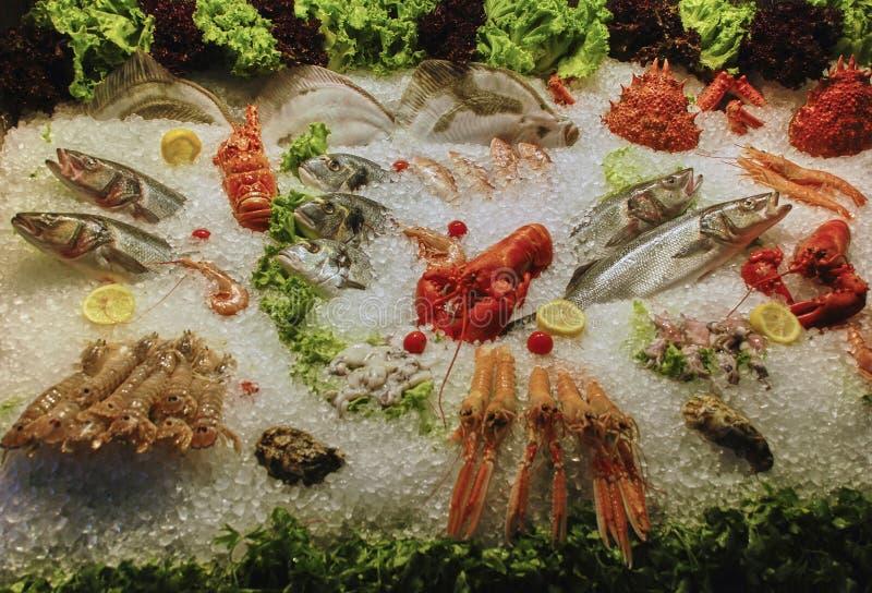 Mariscos en el hielo en el mercado de pescados imágenes de archivo libres de regalías