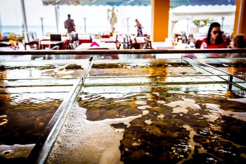Mariscos frescos para la venta dentro del acuario dividido en un restauran imagen de archivo libre de regalías