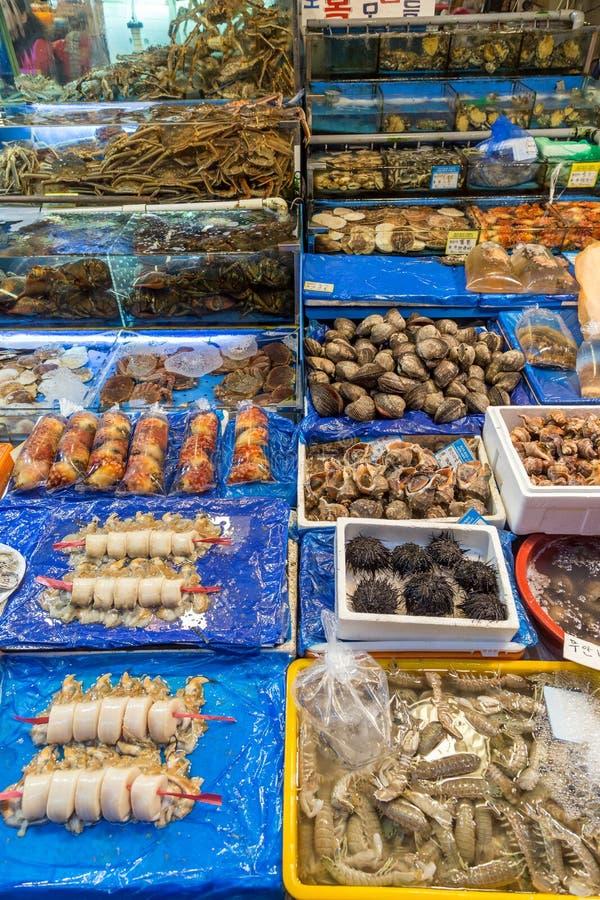 Mariscos para la venta en el mercado de pescados de Noryangjin en Seul imagen de archivo