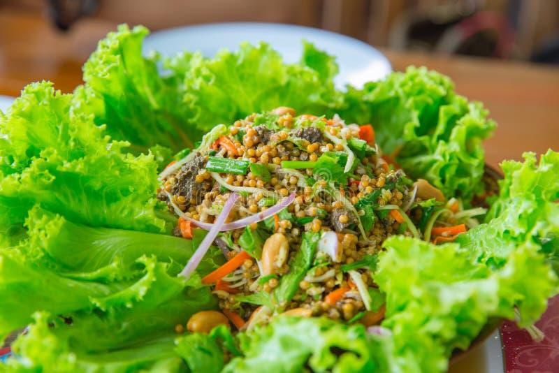 Mariscos picantes calientes del cangrejo de herradura del huevo de la ensalada del chile tailandés de la mezcla fotos de archivo