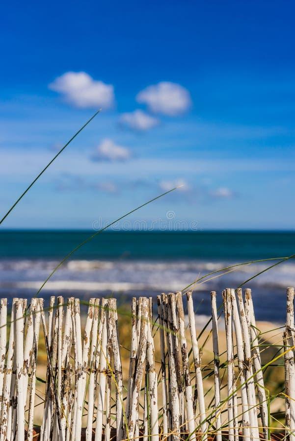 Maritim strandbakgrund med vågor för dynsandstaket och havsvatten royaltyfri fotografi