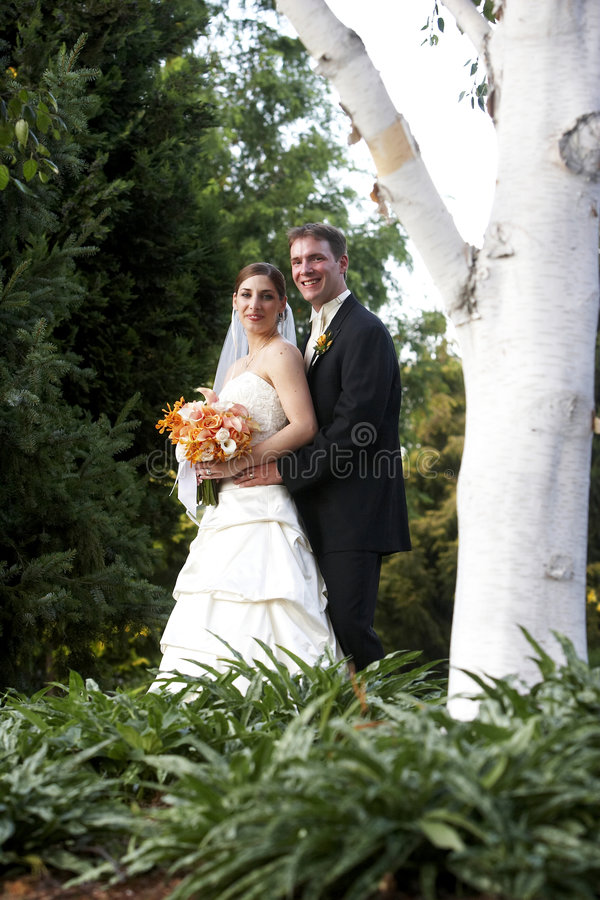 Marito e moglie - serie di cerimonia nuziale fotografie stock libere da diritti