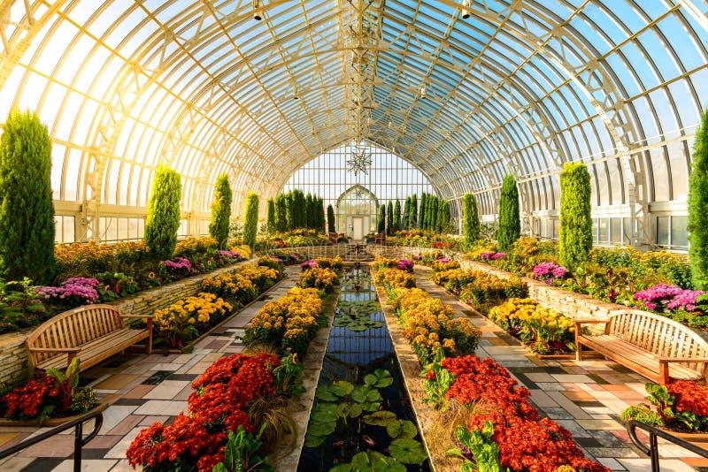 Marjorie McNeely Conservatory Como Park. St. Paul Minnesota. October 27 2019 stock photos