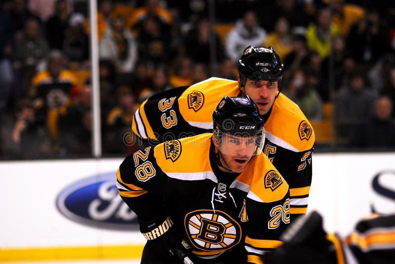 Mark Recchi and Zdeno Chara Boston Bruins. Bruins foward Mark Recchi and defenseman Zdeno Chara await the face-off stock image