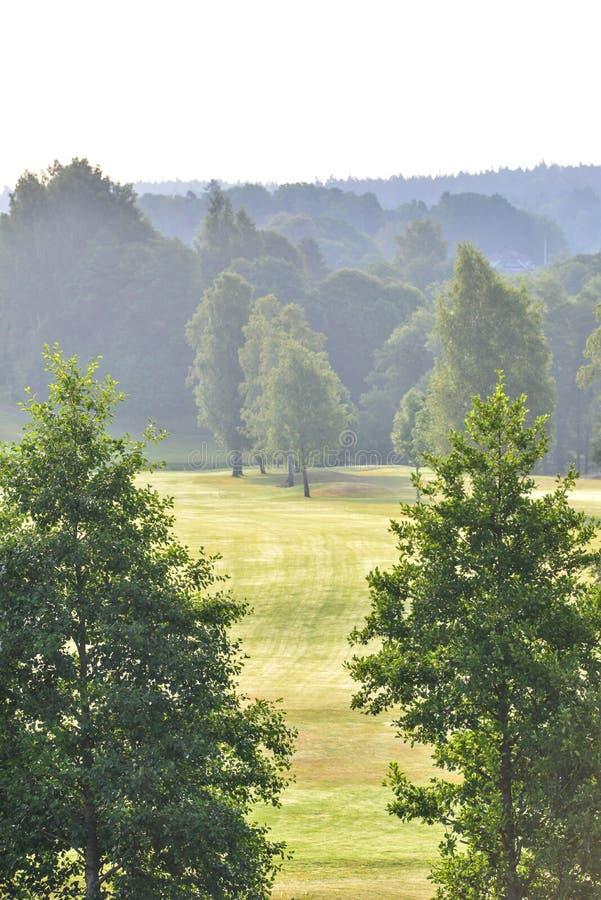 Mark ` s kij golfowy w kinna Sweden zdjęcia royalty free