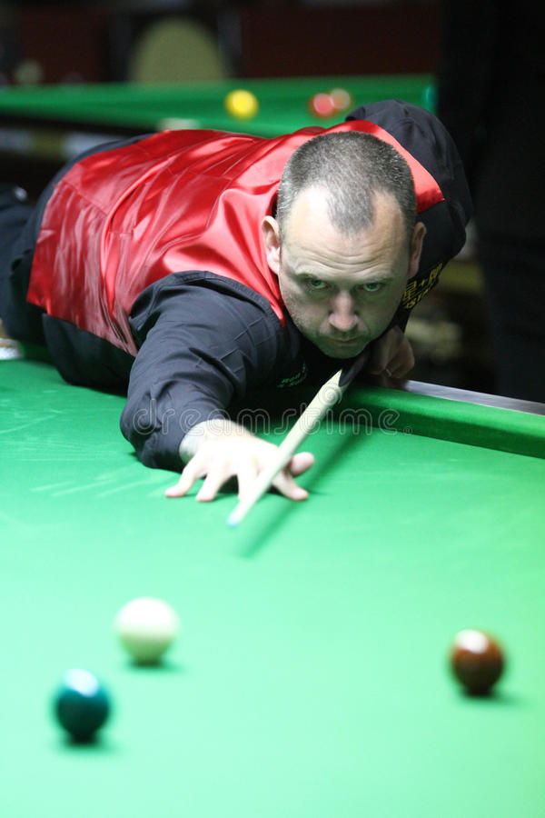 Free Mark Williams Of Wales Royalty Free Stock Image - 44325426