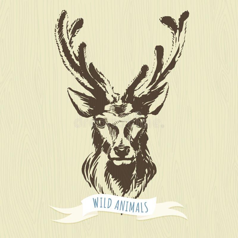 Marker hand-drawn forest animals: deer. Vector illustration Marker hand-drawn forest animals: deer vector illustration