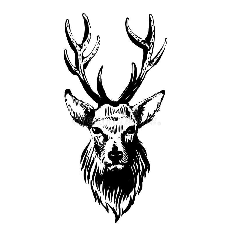 Marker hand-drawn forest animals: deer. Vector illustration Marker hand-drawn forest animals: deer stock illustration