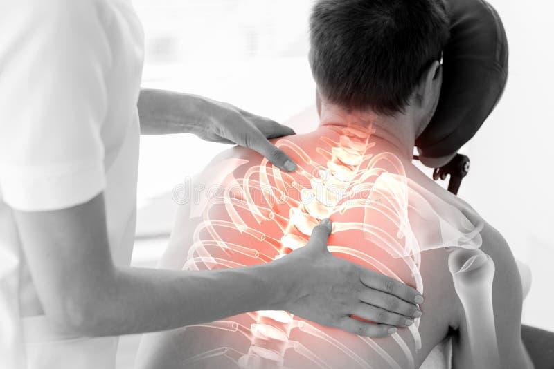 Markerad rygg av mannen på sjukgymnastik royaltyfri bild