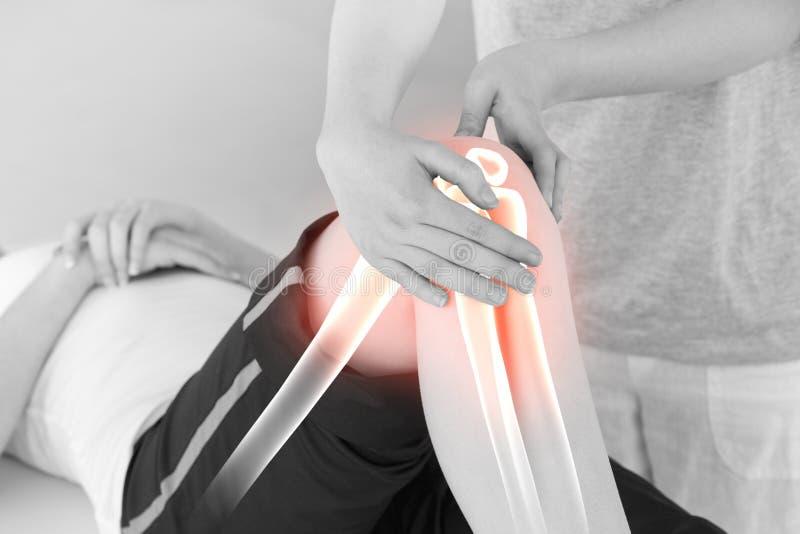 Markerade ben av kvinnan på fysioterapeuten fotografering för bildbyråer