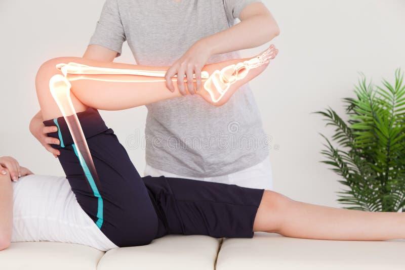 Markerade ben av kvinnan på fysioterapeuten arkivfoton