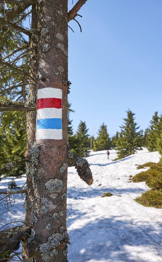 Markering för fotvandra slinga för berg på en trädstam royaltyfri fotografi
