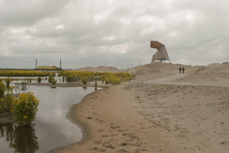 Markerwadden-Sanddünen auf Neuland lizenzfreie stockfotos
