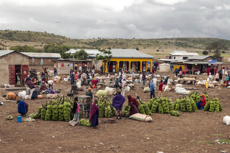 Market in Arusha. Fields where they are buying bananas it, is a picture taken in May 2014 stock image
