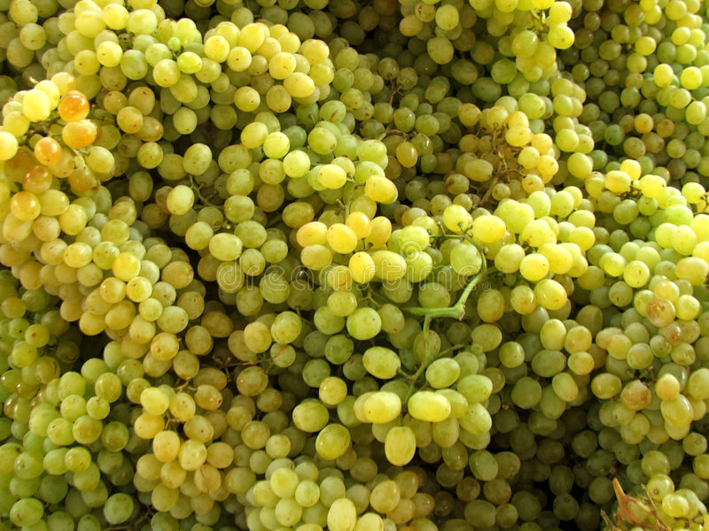 Download Market - Grapes stock image. Image of healthy, merchant - 183163
