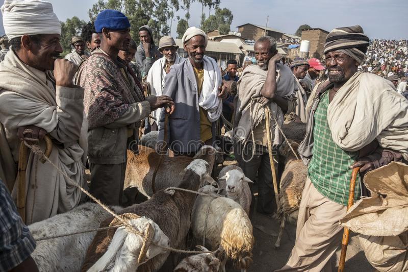 Market in Lalibela, Ethiopia. Lalibela, Ethiopia - January 6: An unidentified man selling sheep in the Lalibela market on January 6, 2018 in Lalibela, Ethiopia stock image