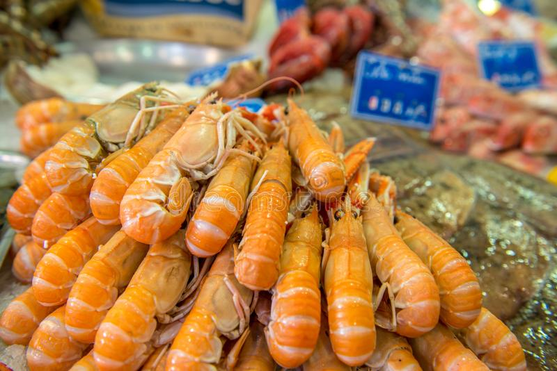 Market stall with fresh seafood stock photos