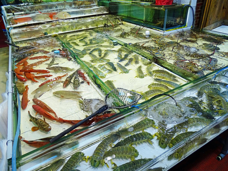 Market stall with Seafood in Hong Kong royalty free stock photo