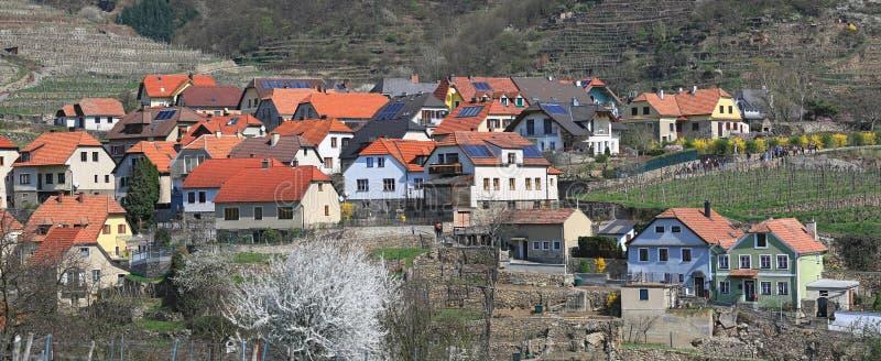 Market town of Weissenkirchen in der Wachau surrounded with terraced vineyards. Austria. stock image