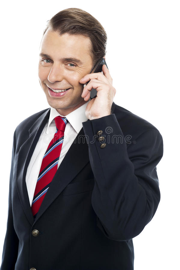 Download Marketing Executive Communicating With Client Stock Photo - Image: 26567254