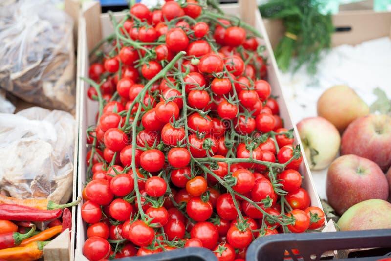 Marknad för körsbärsröd tomat royaltyfri fotografi