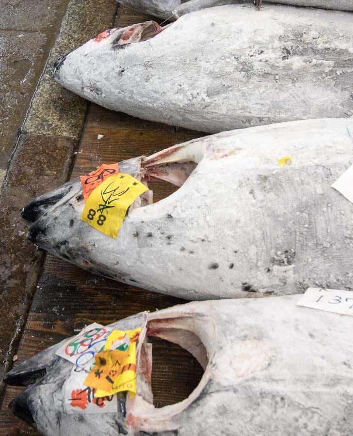 Marknad för tonfiskmarknadstokyo fisk arkivbild