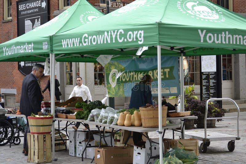 Marknad för ungdom för NYC-gräsplanmarknad fotografering för bildbyråer