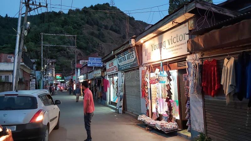 Marknad p? boulevardv?gen Dal Lake Srinagar Kashmir royaltyfri foto