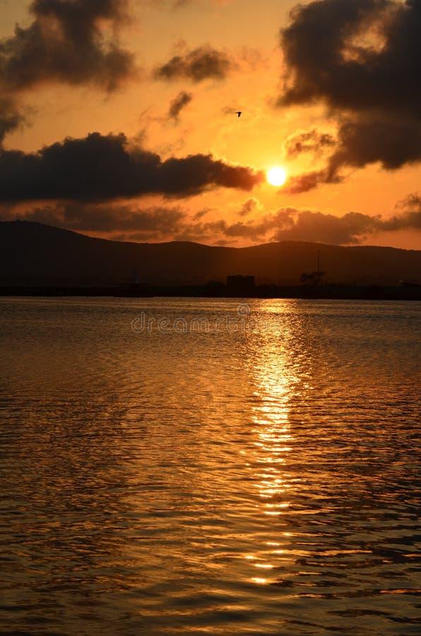 Markotna zmierzch scena nad morze zatoką, pionowo zdjęcie royalty free