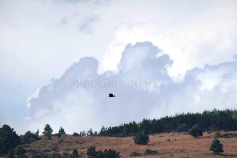 Markotny niebo zdjęcia stock
