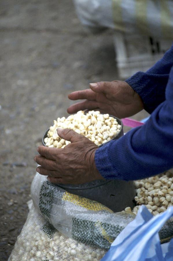 Markt Ecuador stock afbeelding
