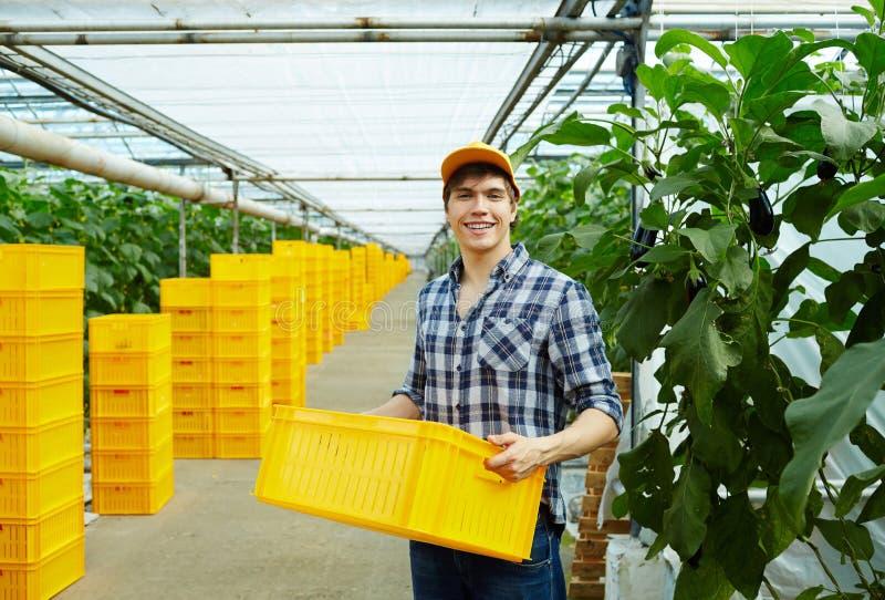 Markt het tuinieren stock foto's