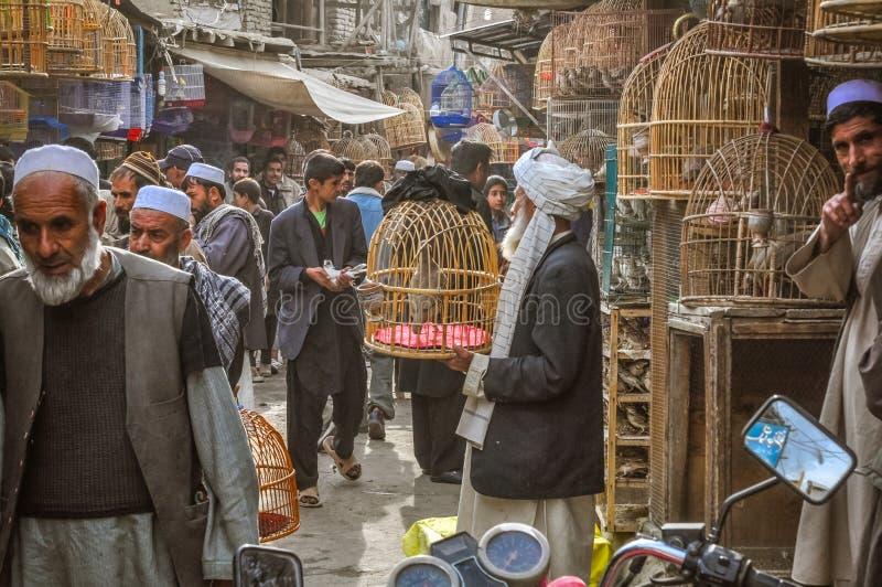 Markt mit Vögeln in Afghanistan stockfotos