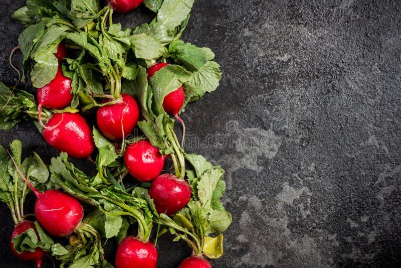 Markt verse organische radijs met bladeren op donkere achtergrond stock fotografie