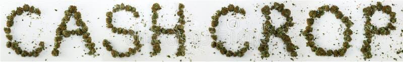 Marktgewas met Marihuana wordt gespeld die stock afbeelding