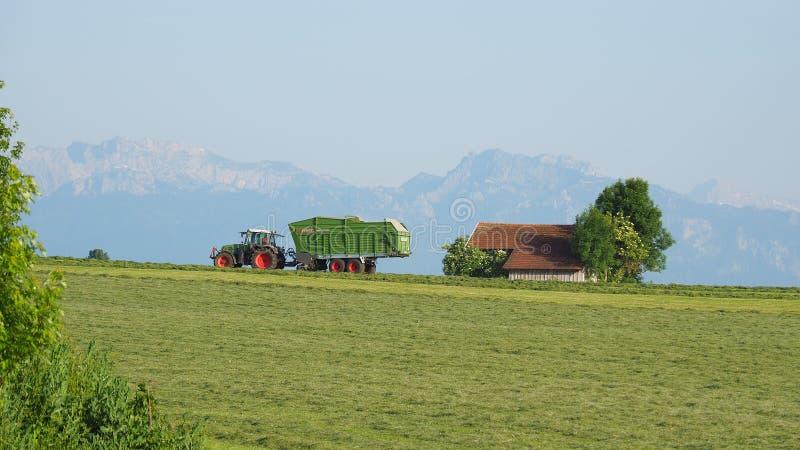 Marktoberdorf, Alemania Los campos verdes con la hierba y el heno cortaron listo para ser cosechado Tractor de Fendt con el remol fotos de archivo