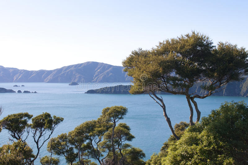 Marlborough Sounds in New Zealand royalty free stock photos