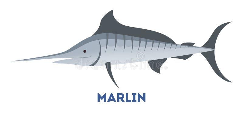 Marlijnvissen van blauwe kleur van overzees vector illustratie