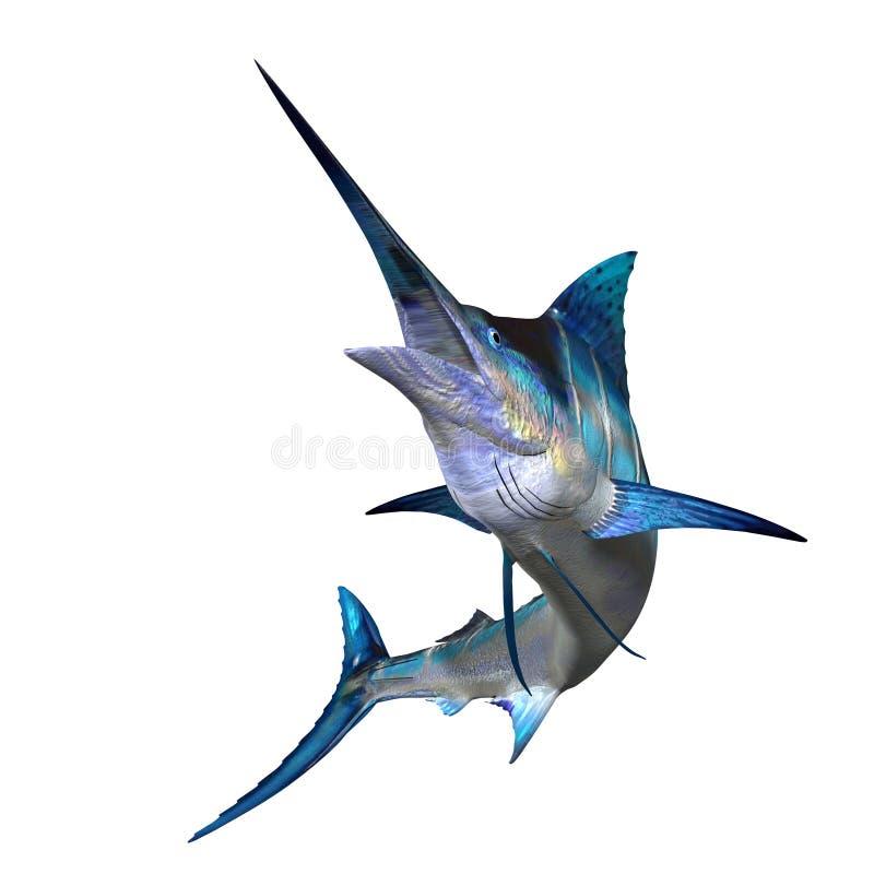 Marlin 01 illustration de vecteur