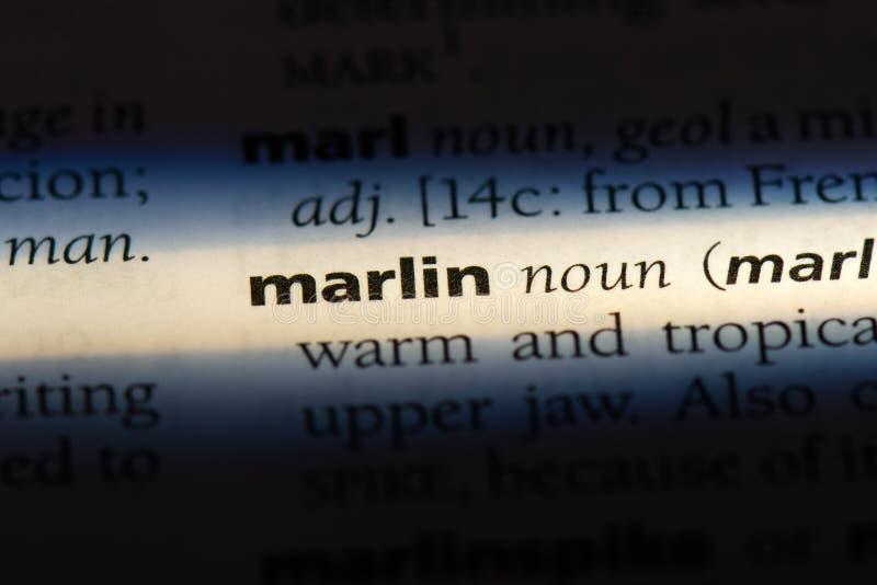 marlin arkivbild