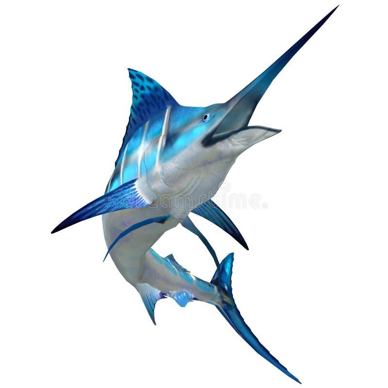 Marlin Fish på vit stock illustrationer