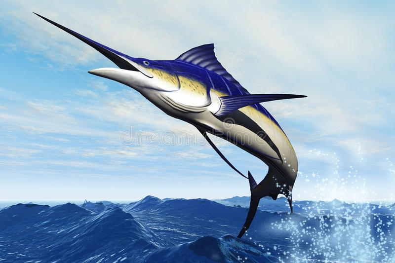 Marlin Jump. A sleek blue marlin bursts from the ocean surface in a grand leap