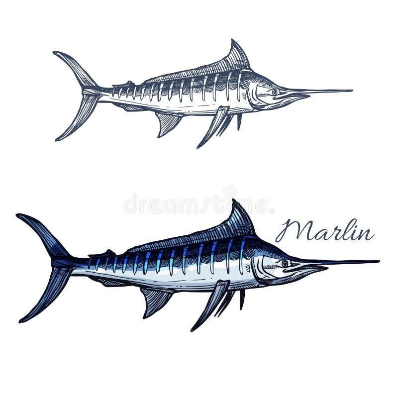 Marlin nakreślenia rybi wektor odizolowywająca ikona ilustracji