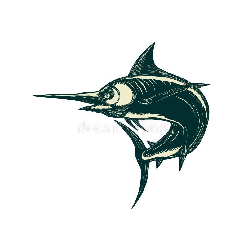 Marlin Scraperboard azul atlántico stock de ilustración