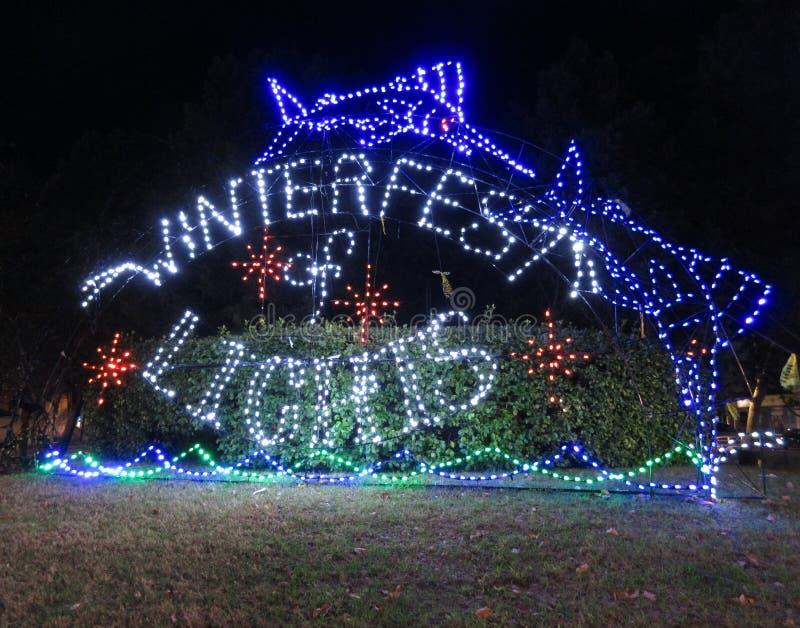Marlin Winterfest Lights de salto en la ciudad Maryland del océano fotos de archivo