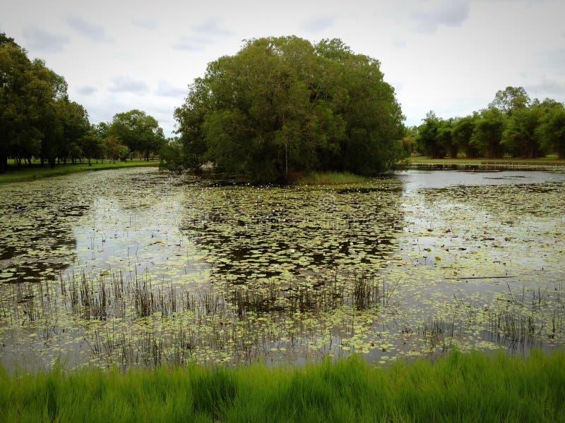 Marlow盐水湖 库存照片