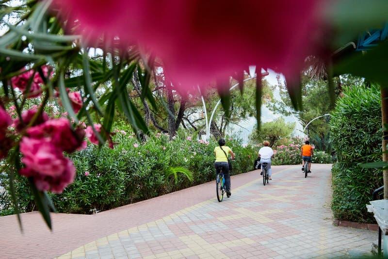 Marmaris, Turquia - 25 de maio de 2018: Trajeto de passeio no parque e ciclistas nele em um dia de verão imagem de stock